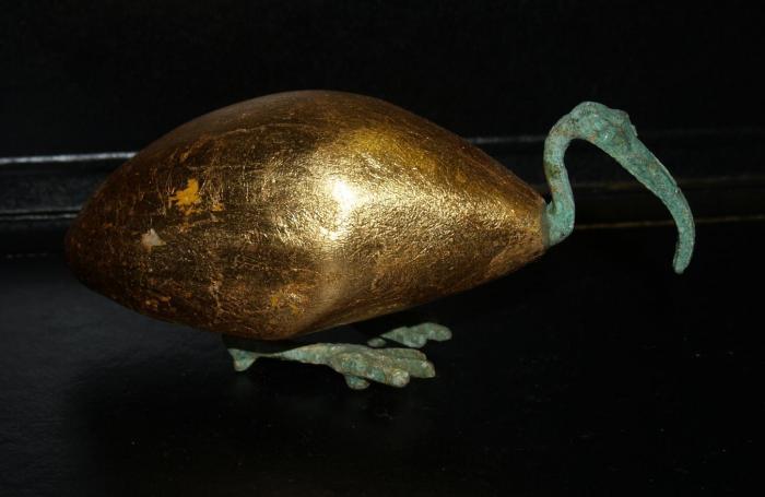 figura ibis